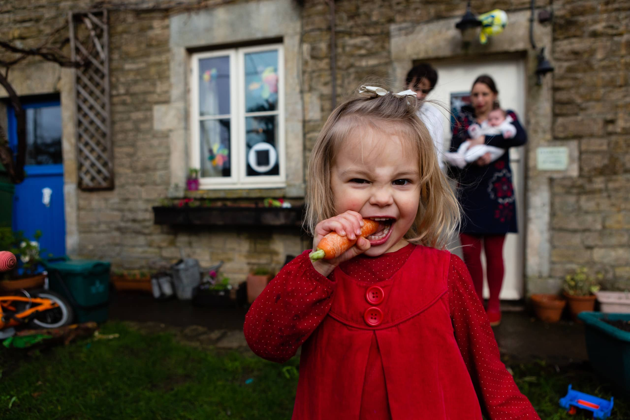 Little girl eats a carrot whilst looking at the camera